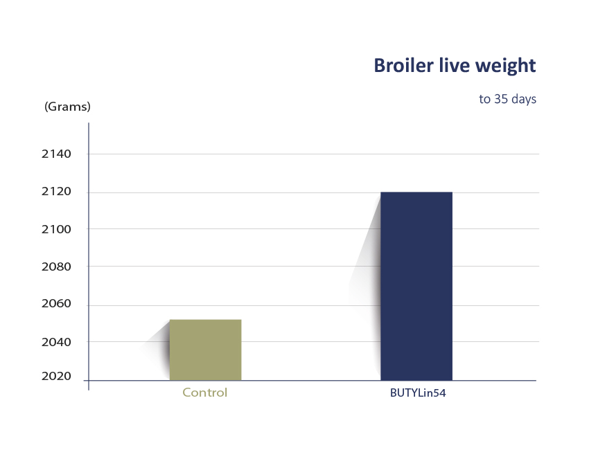 Zootest FIS broiler liveweight